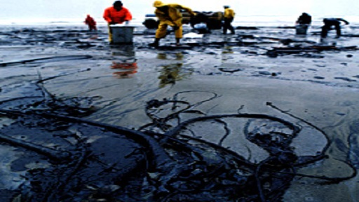Oil spillage clean up